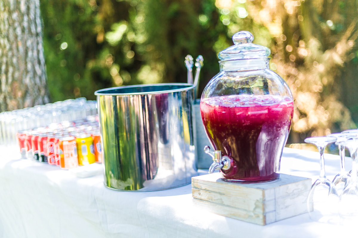 Sugaro-Catering-Cocktail-Particulas-(1)